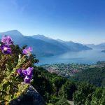 Lago Di Como Gravedona ed Uniti -