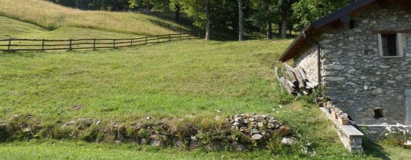 Gravedona ed Uniti Casa con Terreno Collinare con terreno